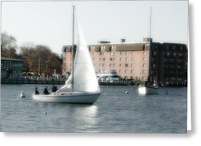 Annapolis Sail Boat Greeting Card