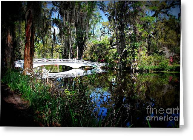 Another White Bridge In Magnolia Gardens Charleston Sc Greeting Card by Susanne Van Hulst