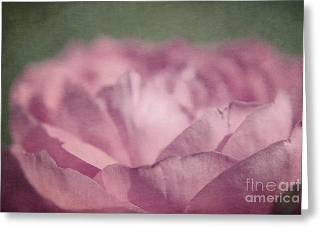 Antique Pink Greeting Card by Aimelle