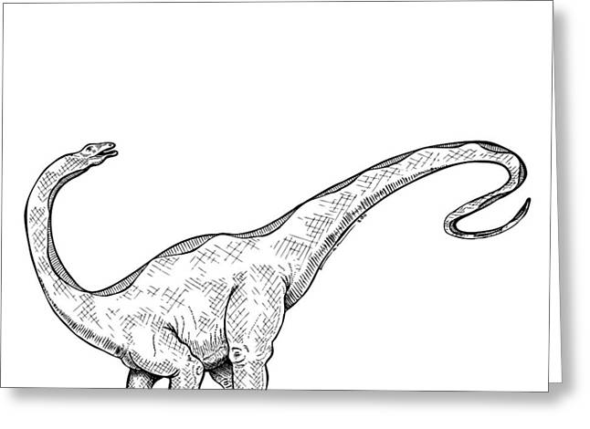 Apatosaurus - Dinosaur Greeting Card by Karl Addison