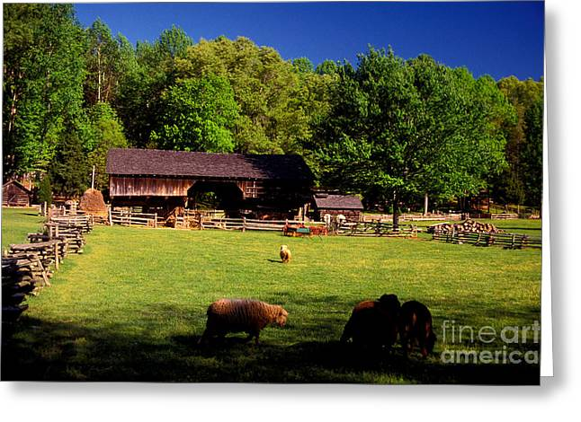 Appalachian Barn Yard Greeting Card by Paul W Faust -  Impressions of Light