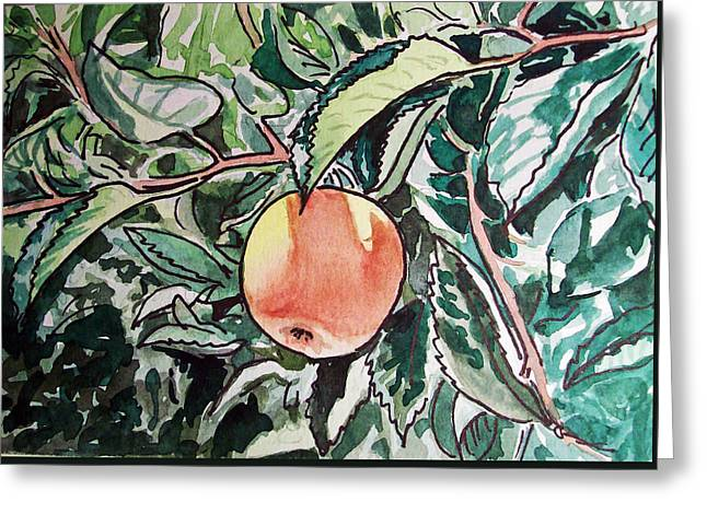 Apple Tree Sketchbook Project Down My Street Greeting Card by Irina Sztukowski