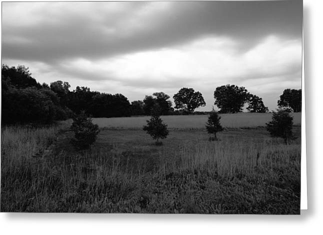 Approaching Storm Over Tree Farm Greeting Card by Jan W Faul