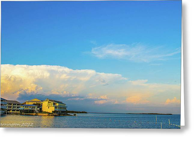 Approaching Storm Greeting Card by Shannon Harrington