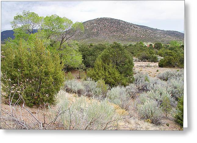 April New Mexico Desert Greeting Card