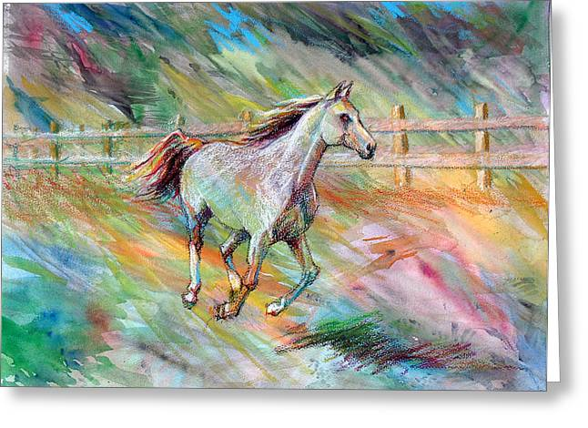 Greeting Card featuring the painting Arabian Dream Horse by Nancy Tilles