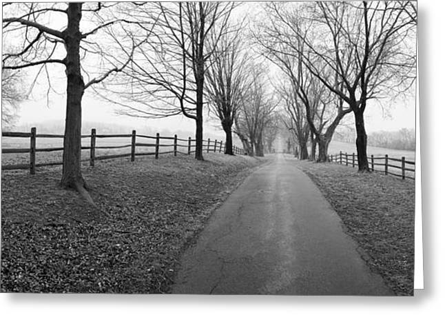 Araby Farm Lane Greeting Card by Jan W Faul