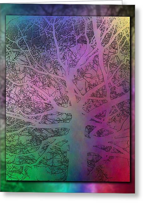 Arboreal Mist 3 Greeting Card