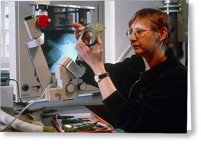 Archaeologist Reconstructing Fragmented Celtic Pot Greeting Card by Volker Steger