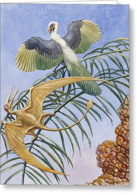 Archaeopteryx And Pterosaurs Were Some Greeting Card by Charles R. Knight