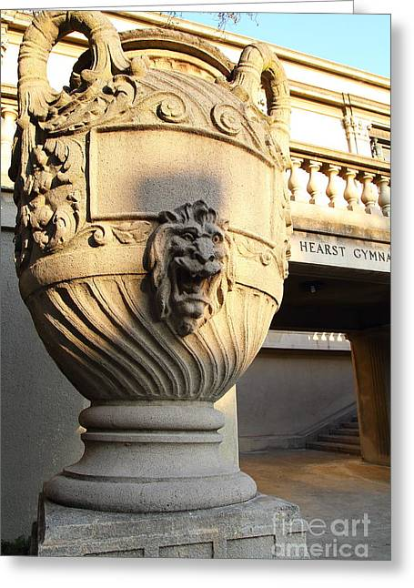 Architectural Detail . Large Urn With Lion Gargoyle  . Hearst Gym . Uc Berkeley . 7d10197 Greeting Card by Wingsdomain Art and Photography