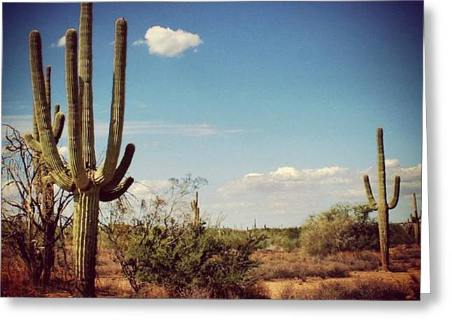 Arizona Greeting Card by Luisa Azzolini