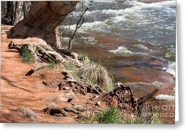 Greeting Card featuring the photograph Arizona Red Water by Debbie Hart