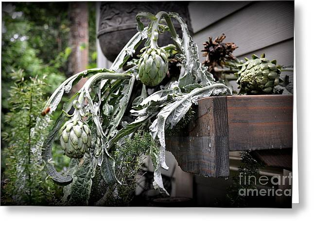 Greeting Card featuring the photograph Artichoke by Tanya  Searcy