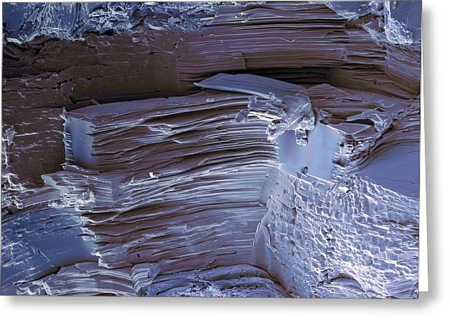 Artificial Sweetener Crystals, Sem Greeting Card by Steve Gschmeissner