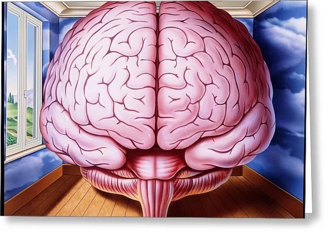 Artwork Of Human Brain Enclosed In Dream-like Room Greeting Card by John Bavosi