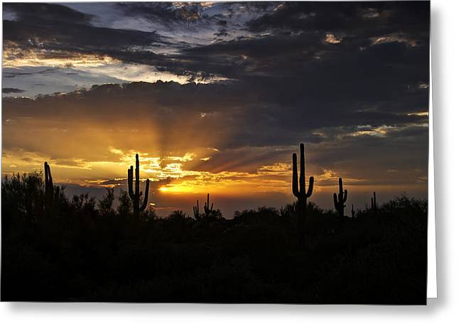 As The Sun Sets In The West  Greeting Card by Saija  Lehtonen
