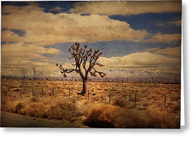 As We Go Down Life's Lonesome Highway Greeting Card by Laurie Search