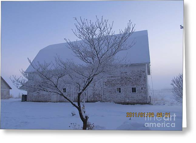 Greeting Card featuring the photograph As White As Snow by Tina M Wenger