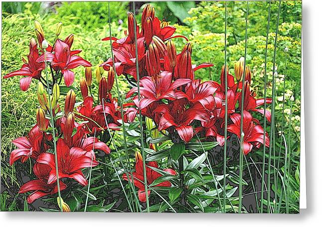 Asiatic Lilies 3 Greeting Card by Tanya  Searcy