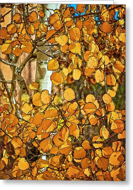 Aspens Gold Greeting Card