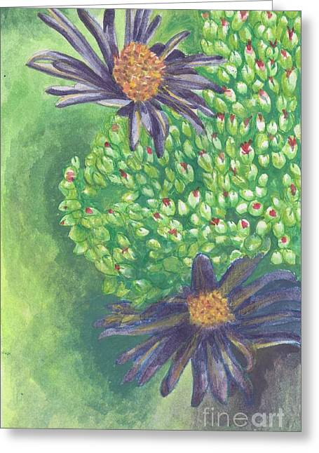 Aster Greeting Card by Acqu Art