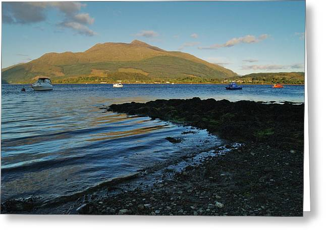 At Airds Bay Greeting Card