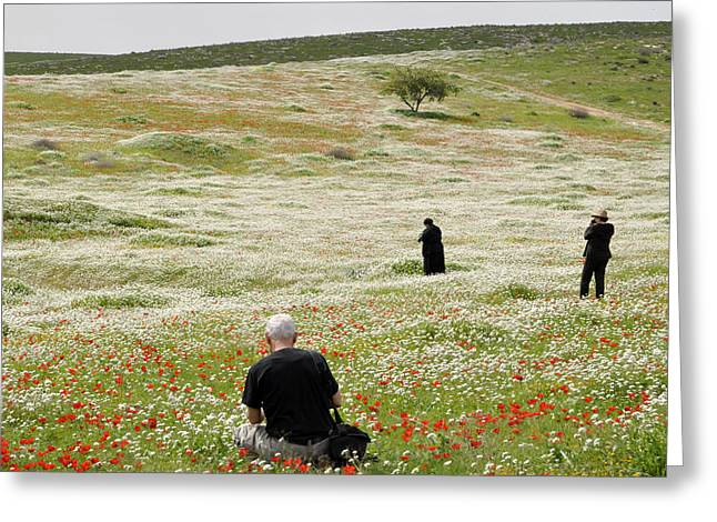 At Lachish's Magical Fields Greeting Card