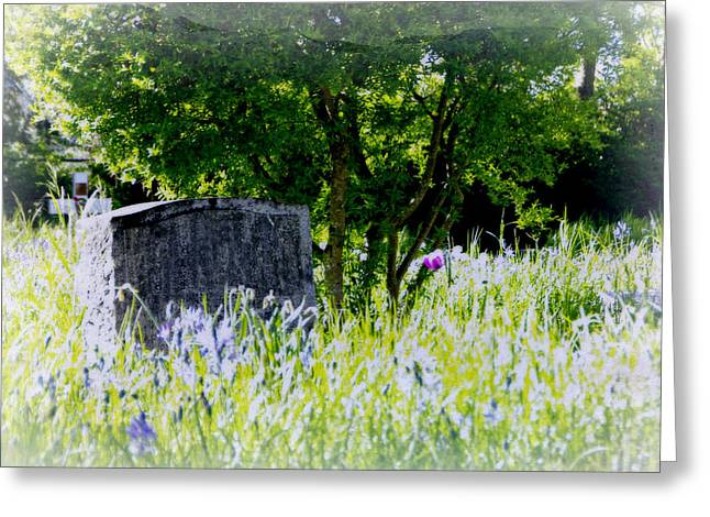 At Rest Greeting Card by Marilyn Wilson