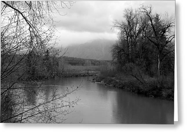 At The River Turn Bw Greeting Card
