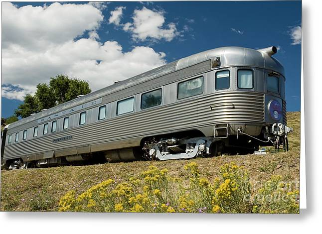 Atsf Train And Flowers Greeting Card by Tim Mulina