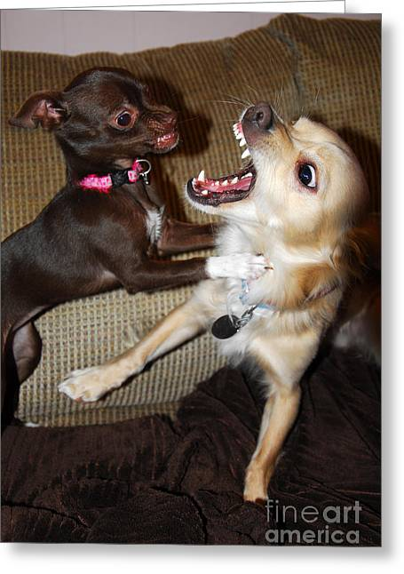 Attack Dogs Greeting Card