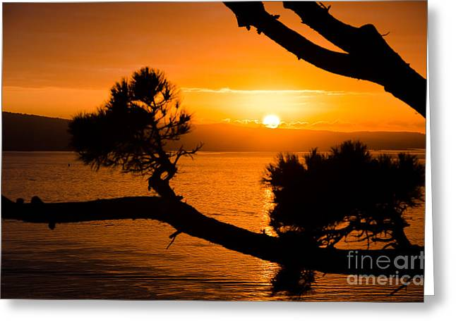 Auckland Sunrise Greeting Card