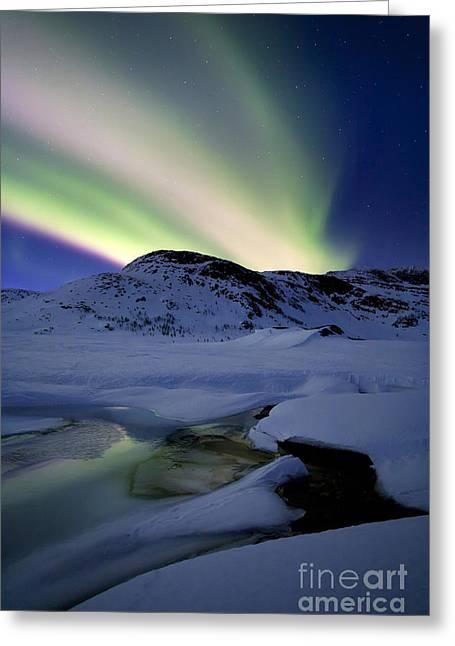 Aurora Borealis Over Mikkelfjellet Greeting Card by Arild Heitmann