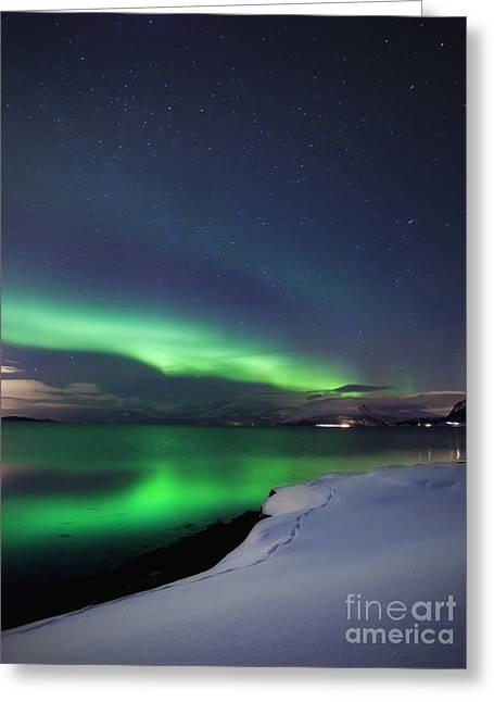 Aurora Borealis Over Vagsfjorden Greeting Card by Arild Heitmann