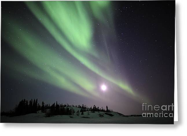 Aurora Borealis, Yellowknife, Northwest Greeting Card