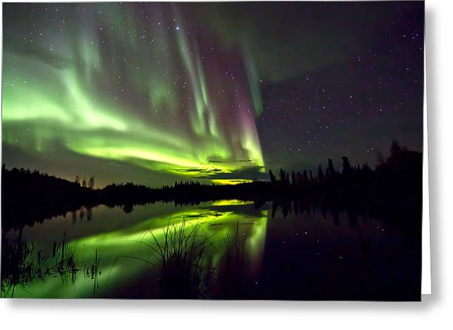 Aurora Rain Greeting Card