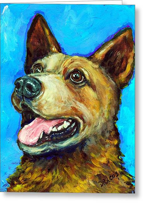 Australian Cattle Dog   Red Heeler  On Blue Greeting Card