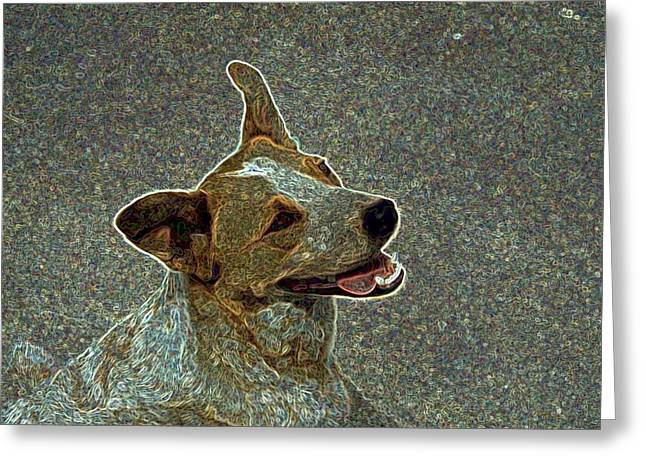 Australian Cattle Dog Mix Greeting Card by One Rude Dawg Orcutt