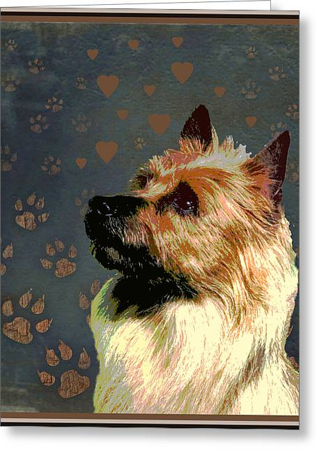 Australian Terrier Greeting Card by One Rude Dawg Orcutt