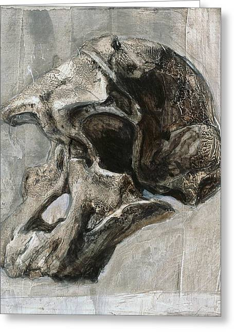 Australopithecus Africanus Skull Greeting Card by Kennis And Kennismsf
