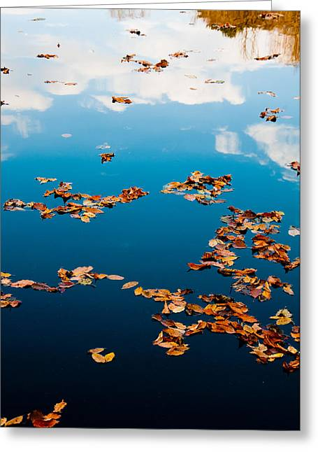 Greeting Card featuring the photograph Autumn - 3 by Okan YILMAZ