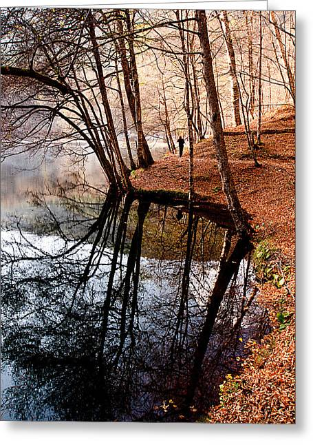 Greeting Card featuring the photograph Autumn - 4 by Okan YILMAZ