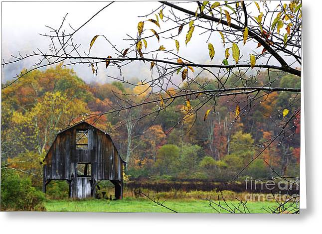 Autumn Along Tioga Road Greeting Card by Thomas R Fletcher