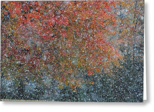 Autumn And Winter Greeting Card by Kimberly Little