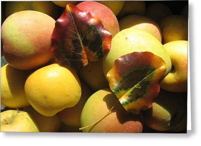 Autumn Apple Afternoon Greeting Card