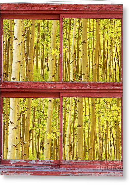 Autumn Aspen Trees Red Rustic Picture Window Frame Photos Fine A Greeting Card by James BO  Insogna