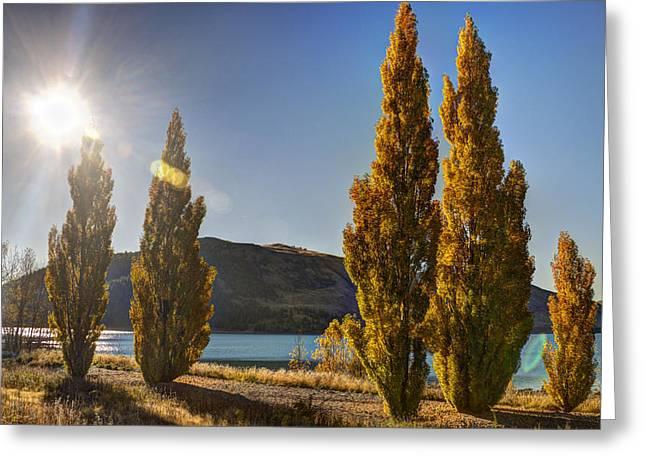 Autumn At Lake Tekapo Greeting Card