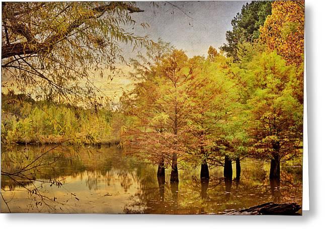 Autumn At The Creek Greeting Card by Cheryl Davis