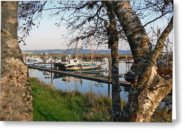 Autumn At The Harbor Greeting Card by Pamela Patch